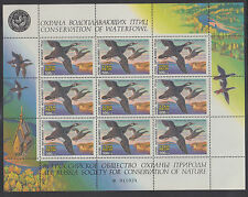 Russia MNH. 1994 Duck Hunting Stamps, Miniature Sheet of 9 VF