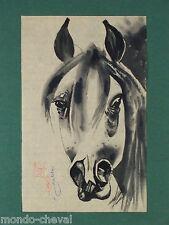 MONGOLIE ! dessin à l'encre de chine sur papier de riz, signé, cheval, horse
