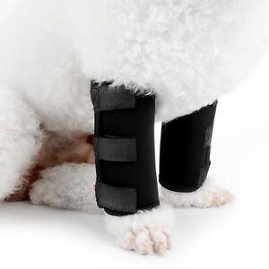DOG-cane-zampa-anteriore-CONTROVENTO-Paw-compressione-avvolge-con-la-protezione-delle-ferite-Brace
