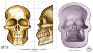 SKULL-EXTRA-LARGE-Craft-Sugarcraft-Sculpey-Soap-Silicone-Rubber-Mould