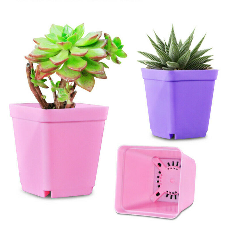 10x Mini Flower Plastic Pot with Saucer Plant Tray Home Garden Kit Home