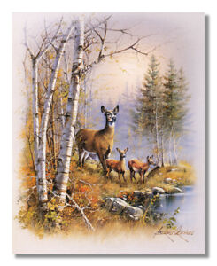 """3-8/"""" X 10/"""" Elk Horse /& Wolf w//Eagle Picture Prints in Lithograph by Dealer"""
