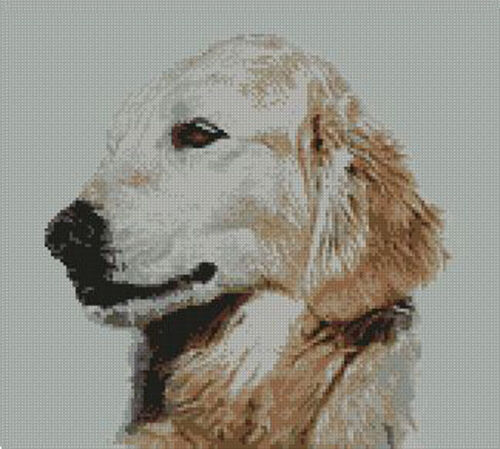 "Golden Retriever 2 Counted Cross Stitch Kit 11.5/"" x 10.25/"" 29cm x 26cm Free P/&P"