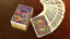 Mardi Gras Edition Playing Cards Deck Brand New Masquerade