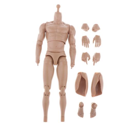 1//6 Scale Male Muscular Seamless Body Skeleton Skull for HT DAM Head Sculpt