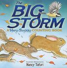 The Big Storm: A Very Soggy Counting Book by Nancy Tafuri (Hardback, 2009)