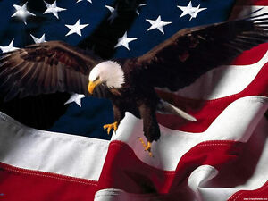 Amazon Com Wallmonkeys American Bald Eagle Wall Mural Peel And Stick Graphic 72 In W X 48 In H Wm187035 Home Kitchen
