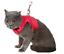 miniatura 3 - Pettorina per Gatti, Cani Conigli di Piccola Taglia, Traspirante Facile