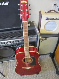 Washburn-D10QR-Custom-Acoustic