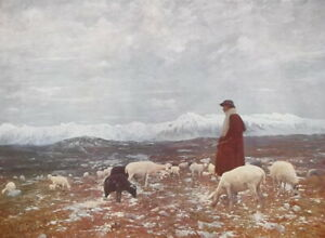 MOUNTAIN-PASTURE-Sheperd-Flock-of-Sheep-by-C-Maggi-SCARCE-1915-Color-Print