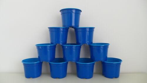 "50 PLASTICA circa 10.5 cm 4 /""BLU ROYAL impianto Flower Pot NUOVO PK"