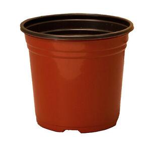 lot of 10 1 gallon plastic nursery flower garden plant pots 6 3 inch ebay. Black Bedroom Furniture Sets. Home Design Ideas