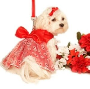 """Dog DRESS, LEASH & BOW Doggie Design Red Daisy Garden Party 22-27"""" Chest Only"""