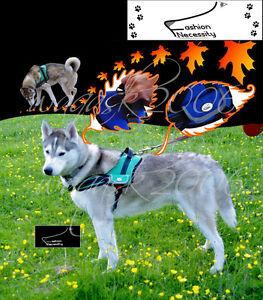 Green-Dog-Harness-S-M-L-XL-padded-extra-Labrador-Husky-Malamute-German-Shepherd