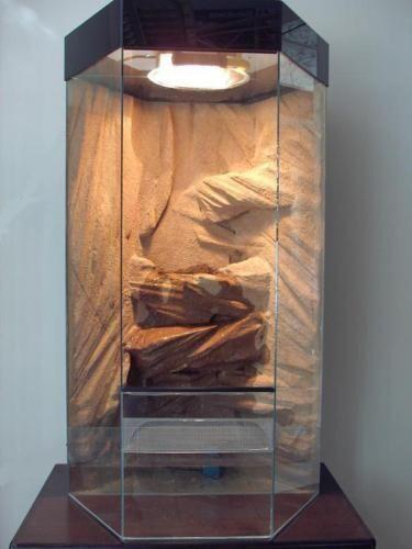 6Eck Hochkant Glas Terrarium 60x120 Wasserfall Paludarium Vivarium Rückwand