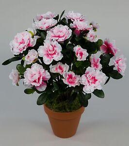 azalee 34cm pink wei im topf la kunstpflanzen k nstliche blumen kunstblumen ebay. Black Bedroom Furniture Sets. Home Design Ideas