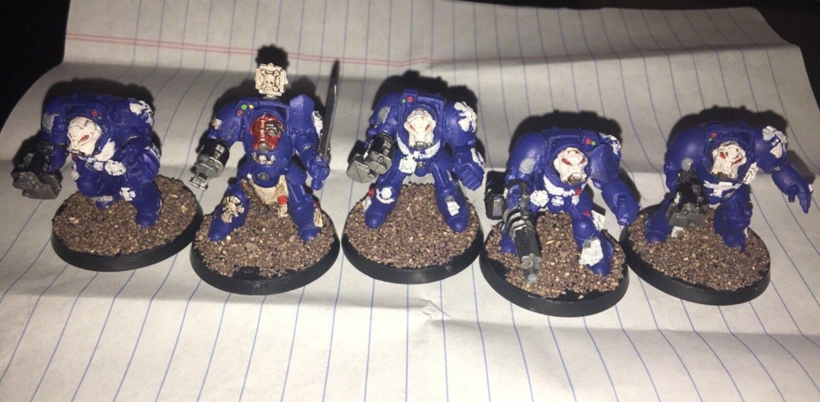 Warhammer 40,000 Adeptus Astarte Terminator Squad  Pro Painted