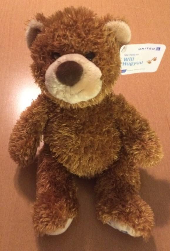 Gund Brown Bear Named Will Hugyou