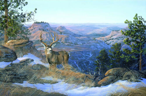 Going to Getaway-Mule Deer Buck-Unframed Wildlife Giclee Canvas Print-Pickthorn