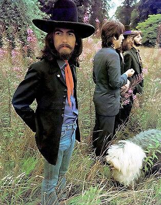 """The Beatles Tittenhurst Park Photo Print 13x19/"""""""