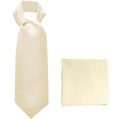 New polyester solid men full ASCOT cravat neck tie /& hankie wedding prom Orange