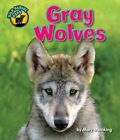 Gray Wolves by Mary Meinking (Hardback, 2014)