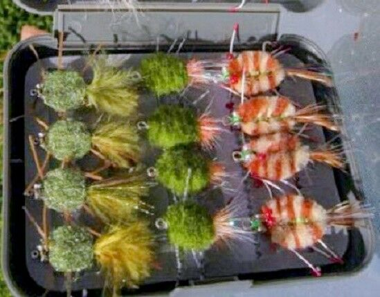24 Boxed Collection of the Beste go to Crab Flies