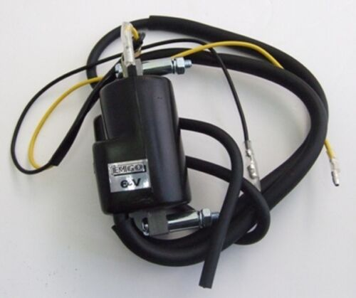 19370 Twin Lead Ignition Coil 6V
