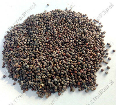 Bulk Asian Spider Flower Seed Cleome Viscosa Yellow Wild Mustard Tickweed Seeds