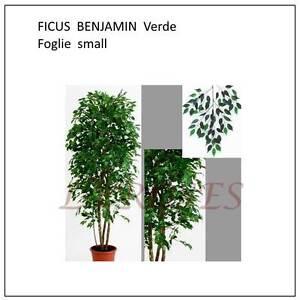 Caricamento Dellu0027immagine In Corso FICUS BENJAMIN Green Foglie Small Piante  Finte Artificiali