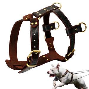 Arnes-cuero-y-piel-marron-para-perros-grande-suave-Pitbull-Doberman-Rottweiler