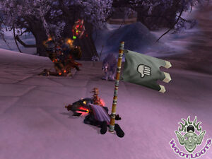 Details about Owned! Loot Card World of Warcraft The Flag Ownership Taunt  WoW TCG PvP Toy Box