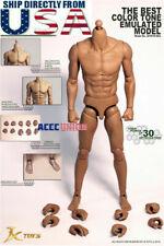 JX TOYS 1//6 Scale Emulated Male Muscular Figure Body JXS02 U.S.A IN STOCK