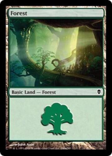 SP//NM 20 Basic Land #246a SAME ART Zendikar Magic MTG FTG Forest