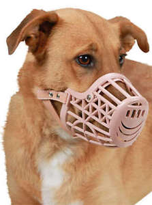 Kerbl-Maulkorb-Kunststoff-fuer-Hunde-Hundemaulkorb-Beisskorb-beige-Hundebeisskorb