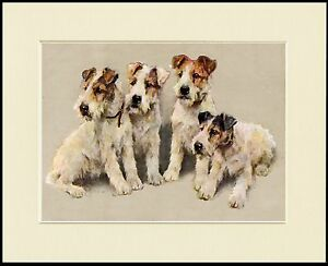 WIRE FOX TERRIER THREE DOGS GREAT DOG PRINT MOUNTED READY TO FRAME