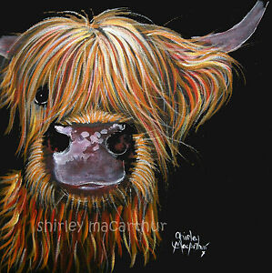Highland cow prints of original scottish painting henry by for Cow painting print