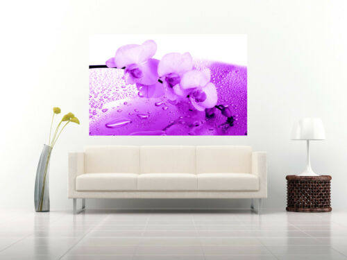 ALL SIZES Purple Orchid Floral Canvas Wall Art Picture Print