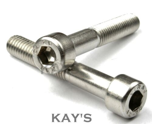 Stainless Steel Cap Head Motorcycle Bolts 200 Pack