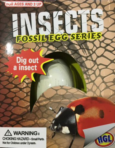 SV14231 DIG ARCHEOLOGY SCIENCE NATURE TOOLS KIDS FUN BUG TOY INSECT FOSSIL EGG