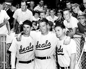 DiMaggio-Brothers-1-Photo-8X10-Joe-Dom-Vince-1956