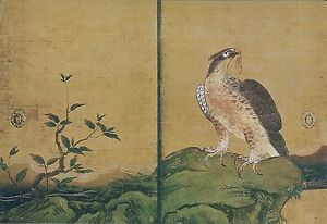Japon-Kyoto-Nijo-Castle-Ohiroma-Fourth-Chamber-Painting-of-Hawks