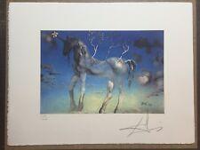 Salvador Dali Litografia 50 x 65 Bfk Rives Timbro a secco Firmata a Matita D2098