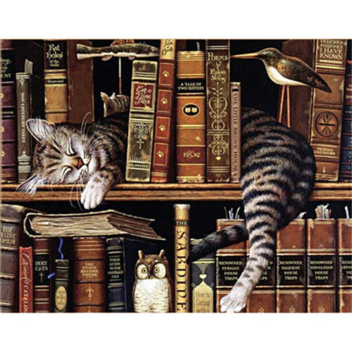 1set Diamond Painting Embroidery Cute Book Shelf Sleepy Kitty Cats DIY Home 2FEH