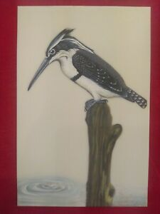 Hand-Painted-King-Fisher-Bird-Miniature-Painting-India-Art-Work-Synthetic-Ivory