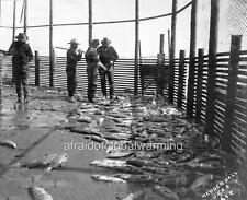 Photo 1890s Soldiers at Tidal Fish Trap - Alaska