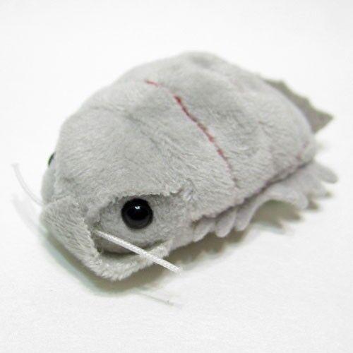 Munumum Plush Giant Isopod /'with you always/'