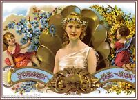 Forget Me-Not Beautiful Woman Vintage Cigar Box Crate Label Art Poster