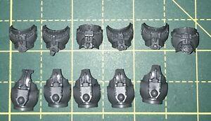 Grey-Knights-Torsos-Warhammer-40K-Space-Marine-Bits