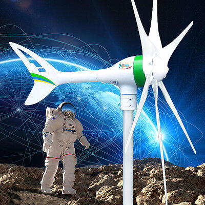 Apollo MAX 1000 W 12 V DC Magnet PMA Wind Turbine Generator 6 Blade +Rectifier